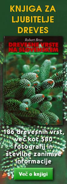 Knjiga Drevesne vrste na Slovenskem