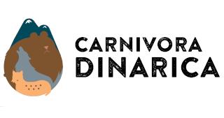 Carnivora dinarica