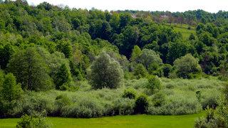 Krajinski park Lahinja