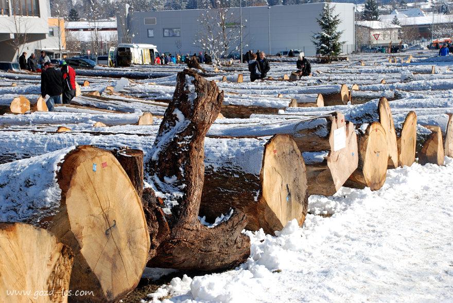 Licitacija lesa